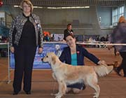 VLANTI DELIMAR kennel