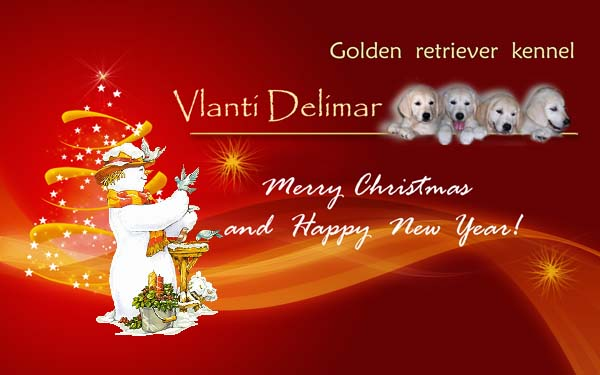 VLANTI DELIMAR. Merry Christmas and Happy New Year!